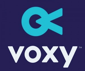Introducing Voxy: Learning from the real world